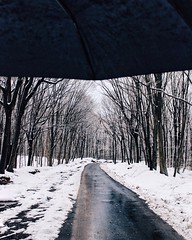 Routes. (creperzs) Tags: winter canon snowy ways