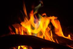 Flames (betadecay2000) Tags: wood camp fire flame copper brand feuer flamme brennen personen glut lagerfeuer hintergrund vuur knstler verschwommen kupfer schwarzer holzfeuer darstellender