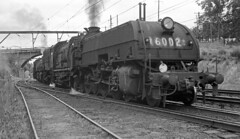 Gosford 1970 - garratts arrive (sth475) Tags: old railroad winter blackandwhite bw heritage classic monochrome train vintage engine railway loco australia goods historic steam negative nsw scanned locomotive preserved centralcoast freight articulated shortnorth gosford latewinter garratt 6002 6009 beyerpeacock nswgr nswr beyergarratt 60class ad60class