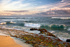 One Morning (mojo2u) Tags: ocean morning beach hawaii maui hookipa nikond700 nikon28300mm