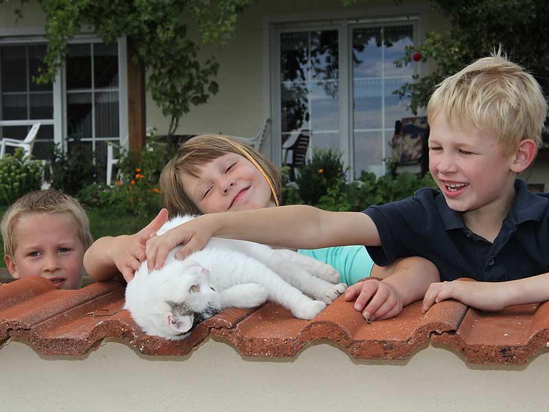 Kastanienhof Selz - Kinder mit Katze