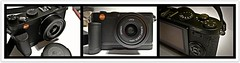 Leica Camera AG X1 : IMAGES TAKEN WITH A Leica D-Lux 5 : Beauty meets Beauty (|| UggBoyUggGirl || PHOTO || WORLD || TRAVEL ||) Tags: travel friends dublin black sunshine photography fly favorites health views points faves hotels performer newcamera discovery justdoit comments picnik beautifulmoments signin viewers stability stateoftheart insights lookingbeyond totheworld irishlove irishpride muchmore hiltondublin irishluck milesandsmiles shootandshare x1camera leicax1 hiltondublinairport ugggirl leicadlux5 uggboy manymorebeautifuldecadesahead sinceseptember29th2009 signupandenjoy togetherwithloveandfun moremoreflickrdecades smilesandalwaystravelahead ourgreetingsofloveandhappiness evoloveandexploreatalltimes 2plusyearflickranniversary