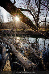 River Rays - NEX 5N (Nick Chill Photography) Tags: trees sunset nature landscape photography sony fineart scenic iowa explore sunburst rays yellowriver stockimage stateforest nickchill mirrorlessinterchangeablelens nex5n sonye16mmf28wideangle