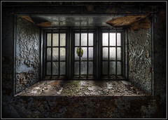 Window to the Soul (Ivorbean) Tags: window dark scary nikon shadows decay rusty eu creepy spooky urbanexploration rusting rotten asylum derelict crusty decayed urbex windowtothesoul abandonedasylum d700 ivorbean manorhousen wwwdallowphotoartcom urbexprints