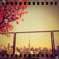 20111215 (_moyoco_) Tags:   tower  201112 lemecam