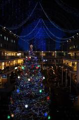 "Christmas tree of ""SAPPORO FACTORY"" (Hanafan) Tags: christmas sapporo hokkaido"