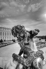 Yeah man, ici c'est Versailles! (XavierParis) Tags: bw sculpture white black france blanco nikon noir noiretblanc negro nb versailles xavier estatua xavi blanc hernandez scultura statut iberica d700 xavierhernandez 150711 xyber75 15juillet2011 xavierhernandeziberica