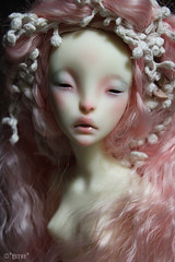 Mab (Esthy & Lulla) Tags: france ball doll dolls ombre bjd resin jointed lillycat cerisedolls