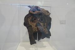 P1050204 (clyangtw) Tags: amsterdam cobramuseum