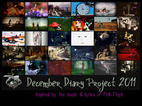 December Diary Project 2011