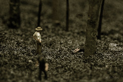 Found (3rd-Rate Photography) Tags: macro texture canon toy death woods kill florida police scene 100mm crime cop 7d figure murder jacksonville hoscale 3rdratephotography