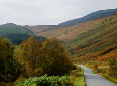Autumn colours on the road to Dunalistair (cardally) Tags: autumn scotland perthshire