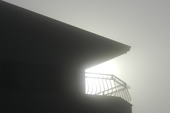 a shark in the fog (Marsala Florio) Tags: fog sunrise nikon alba nebbia s9100 obliquemind obliquamente nikoncoolpixs9100
