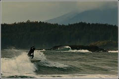 BC Styley (Mark Faviell Photos) Tags: winter beach vancouver island surf bc pacific surfing vancouverisland tofino chesterman