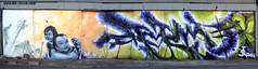 Japanese Grapes (tatscruinc) Tags: streetart japan graffiti bio nicer tatscru bg183 totem2 themuralkings