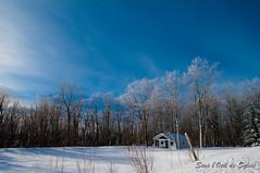 Le Petit Chalet Beauceron (Sous l'Oeil de Sylvie) Tags: blue trees winter sky snow cold raw pentax hiver bleu ciel arbres qubec chalet neige paysage campagne froid beauce lightroom sigma1020mm k7 enneig stthophile sousloeildesylvie