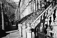 in a row (jules1836) Tags: city houses blackandwhite jerseycity row railings brownstones