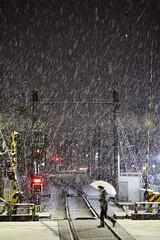 Snowfall (mrhayata) Tags: winter woman snow japan night umbrella geotagged tokyo blog crossing rail snowfall setagaya sangenjaya tokyu mrhayata 世田谷線 geo:lat=35644064 geo:lon=139668764