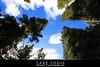 ( LAKE LOUISE 1 ) (✿ SUMAYAH ©™) Tags: ca lake canada canon landscape eos louis ab alberta banff 550d لاندسكيب فلكرسمية المصورةسمية سميةعيسى