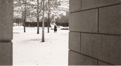 (the.anomalous) Tags: leica winter snow minnesota minneapolis sculpturegarden c3 walkerartmuseum