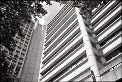 Town Hall House (Adam Dimech) Tags: building film architecture concrete hall office sydney australia nsw newsouthwales council government townhall administration ilford fp4 offices brutalism brutalist ilfordfp4 cityofsydney localgovernment bétonbrut townhallhouse