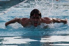 The Swimmer - Butterfly (Alexis Foissy Photography) Tags: santiago sports water pool sport natation butterfly nager agua eau chili schwimmen papillon nadar swimmer mariposa farfalla nage piscine providencia natacion nageur sportif tobalaba picina stadefranais delfinschwimmen