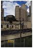 A casa dos Gatos - Terminal Bandeira (Donna Kether) Tags: brasil sãopaulo catshouse terminalbandeira