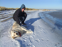 Arctic games (Lumatic) Tags: winter friends boy sea portrait dog pet sun cold ice nature landscape real island happy golden coast frozen necklace wind outdoor walk dunes dune baltic retriever arctic hund shore moment collar caress ostsee excursion junge lolland kste halsband fondle streicheln albuen neckband gettygermanyq4