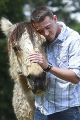 young man hugging a horse at Sanctuary One (Sanctuary One) Tags: horses horse rescue pet pets nature animal animals farm jacksonville sanctuary farmanimals permaculture applegatevalley applegate farmsanctuary animaltherapy farmingforhealth 97530 horticulturaltherapy sanctuaryone carefarm