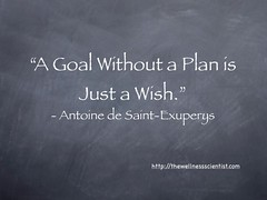 A Goal Without a Plan is Just a Wish (WellnessScience) Tags: goal quotes smartgoals