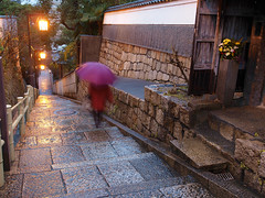 rainy morning on slope (k n u l p) Tags: city morning flower rain temple lights olympus 大阪 osaka slope ep1 zd 1454mm yuhigaoka tennnoji 口縄坂 天王寺七坂 夕陽丘 このへん猫いっぱい