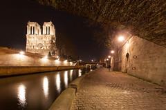 IMG_1102.jpg (ruedesphotos) Tags: france bynight notredamedeparis voyages quaideseine typedephoto typedelumiere