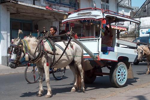 Indonesia - Lombok - Mataram - Cidomo (Horse-Cart-Taxi) - 11