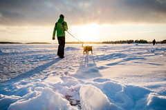 On Ice I (Kimmo J) Tags: winter sunset dog sun snow man ice clouds espoo finland walking shadows uusimaa esbo canonef24105mmf4lisusm haukilahti canon6d