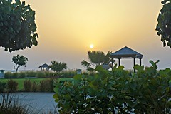 Late Afternoon Over The Arabian Sea (pam's pics-) Tags: ocean city sunset sea sky urban sun beach hotel sand dubai uae unitedarabemirates arabiansea pammorris pamspics sonya6000