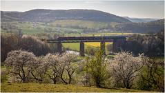 The Train . (:: Blende 22 ::) Tags: flower germany landscape deutschland spring hessen blossom landschaft springtime frhling hesse blten canoneos5dmarkii ef2470f28liiusm