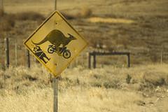 DSC08730 (slackest2) Tags: road signs warning australia kangaroo roo