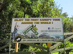 """Santa Elena: c'est parti pour un super parcours de tyroliennes ! <a style=""""margin-left:10px; font-size:0.8em;"""" href=""""http://www.flickr.com/photos/127723101@N04/26927720361/"""" target=""""_blank"""">@flickr</a>"""