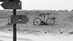 Bike on the path (patrick_milan) Tags: blackandwhite bw beach canon sand brittany noiretblanc path dune sable bretagne nb cycle plage velo vtt finistere saintpabu gr34