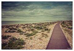 The Beach Path at Shoreham (go18lf2004) Tags: sea beach weather clouds path horizon shingle perspective pebbles formation processing vegetation distance shoreham vintagestyle