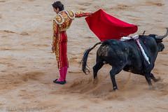 Corrida Nîmes - Samedi 14 Mai 2016 (jerbrune) Tags: france feria nimes fr corrida bullfighting nîmes 2016 languedocroussillonmidipyrénées languedocroussillonmidipyrén