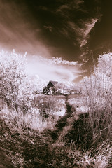 IMG_4394 (linebrell) Tags: sky color nature grass clouds landscape ir angle wide fisheye tokina infrared false 1017