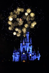 Disney Lights (DavidAvila Photography) Tags: park blue light sky people black castle colors yellow america outdoors photography amusement orlando nikon shadows state bright florida fireworks united north highlights structure land balance states hue intensity d3100