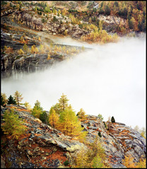 World above clouds (Katarina 2353) Tags: world above wood travel autumn vacation mist mountain alps fall film nature beautiful fog clouds landscape photography switzerland nikon europa europe flickr view place image swiss paisaje zermatt peaks paysage priroda tress tjkp pejza  katarinastefanovic katarina2353 mygearandme mygearandmepremium