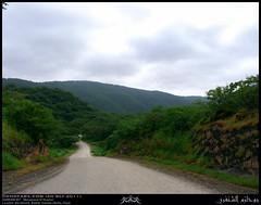 Ain Athoom, Nashib, Salalah, Dhofar (Shanfari.net) Tags: green nature season lumix raw natural panasonic vegetation greenery lush oman fz zufar rw2 salalah sultanate sarb dhofar  khareef    dufar      dhufar governorate dofar fz38 fz35 dmcfz35