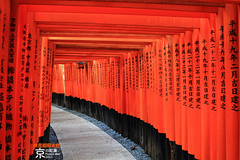 Fushimi-Inari Taisha Shrine (fravenang) Tags: park autumn fall nature japan landscape temple kyoto      fushimiinaritaisha   canon7d