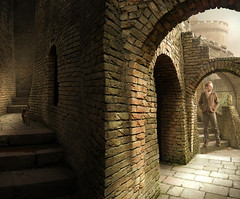 the first days of winter (Mattijn) Tags: castle cat arch photomontage amersfoort