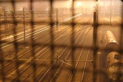NEVER STOP (skech82) Tags: light lamp station night train fence faro grate railway railwaystation locomotive stazione treno notte luce passaggio grata binario mezziditrasporto mezzoditrasporto skech82