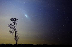 Andromeda from  far South (lrargerich) Tags: light sky tree argentina night rural landscape mercedes nightscape south observatory andromeda galaxy m31 pollution hemisphere m32 astrotrac