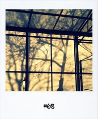 """#Dailypolaroid of 6-12-11 #68 #fb • <a style=""""font-size:0.8em;"""" href=""""http://www.flickr.com/photos/47939785@N05/6479039741/"""" target=""""_blank"""">View on Flickr</a>"""